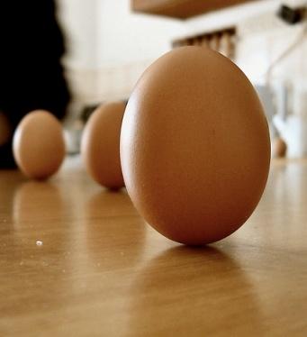 egg balanced